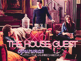 Watch on-line Vampire Diaries 2.16: The House Guest