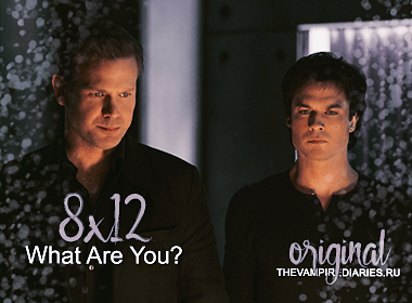 Watch on-line Vampire Diaries 8.12: What Are You?